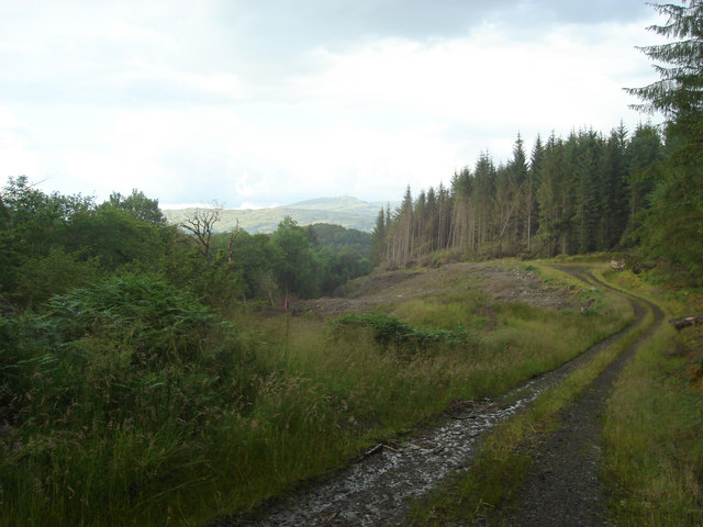 Fearnoch Forest, Barcaldine Castle , Walking Trails, Oban